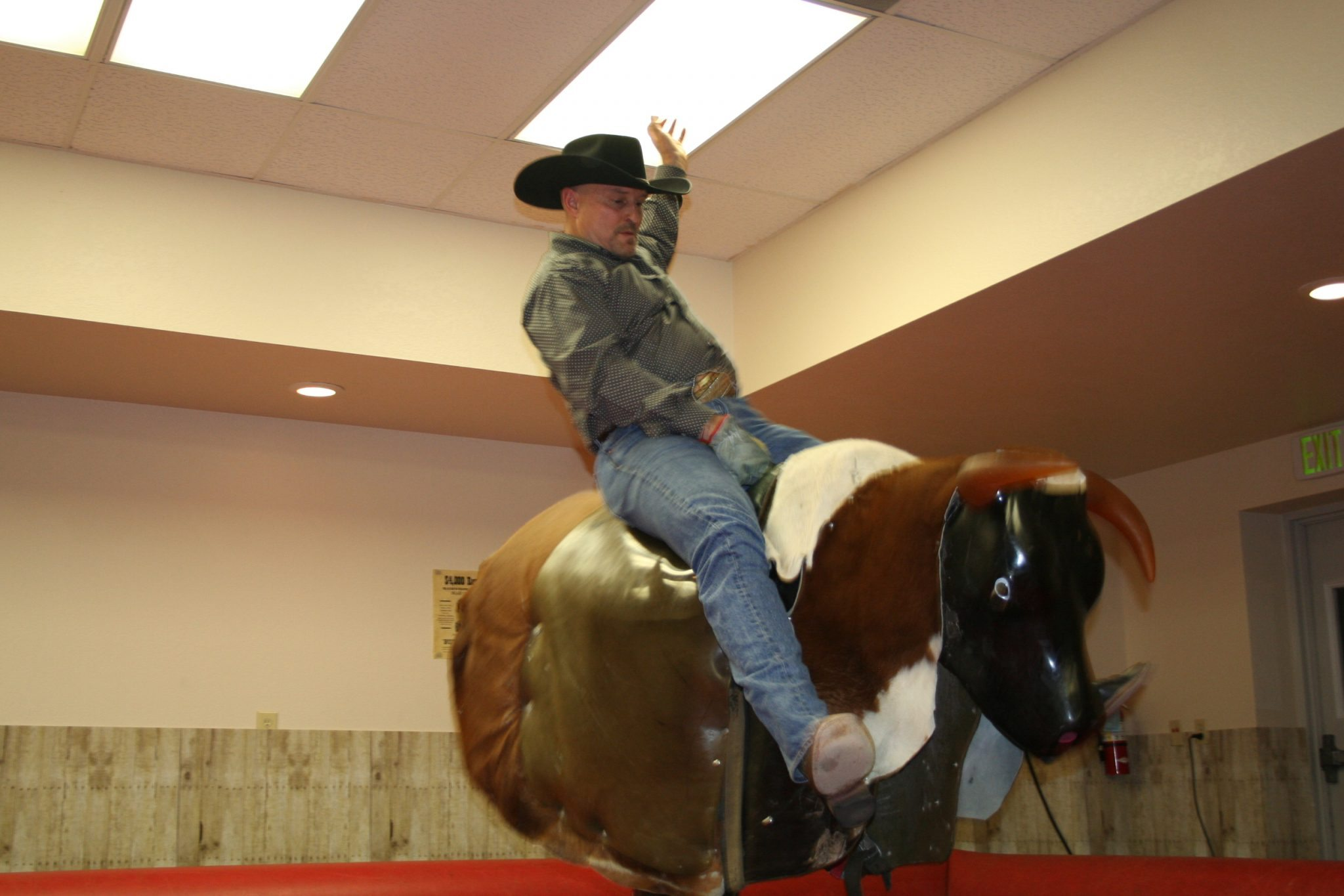 2015 Prairie Rose Bull Riding