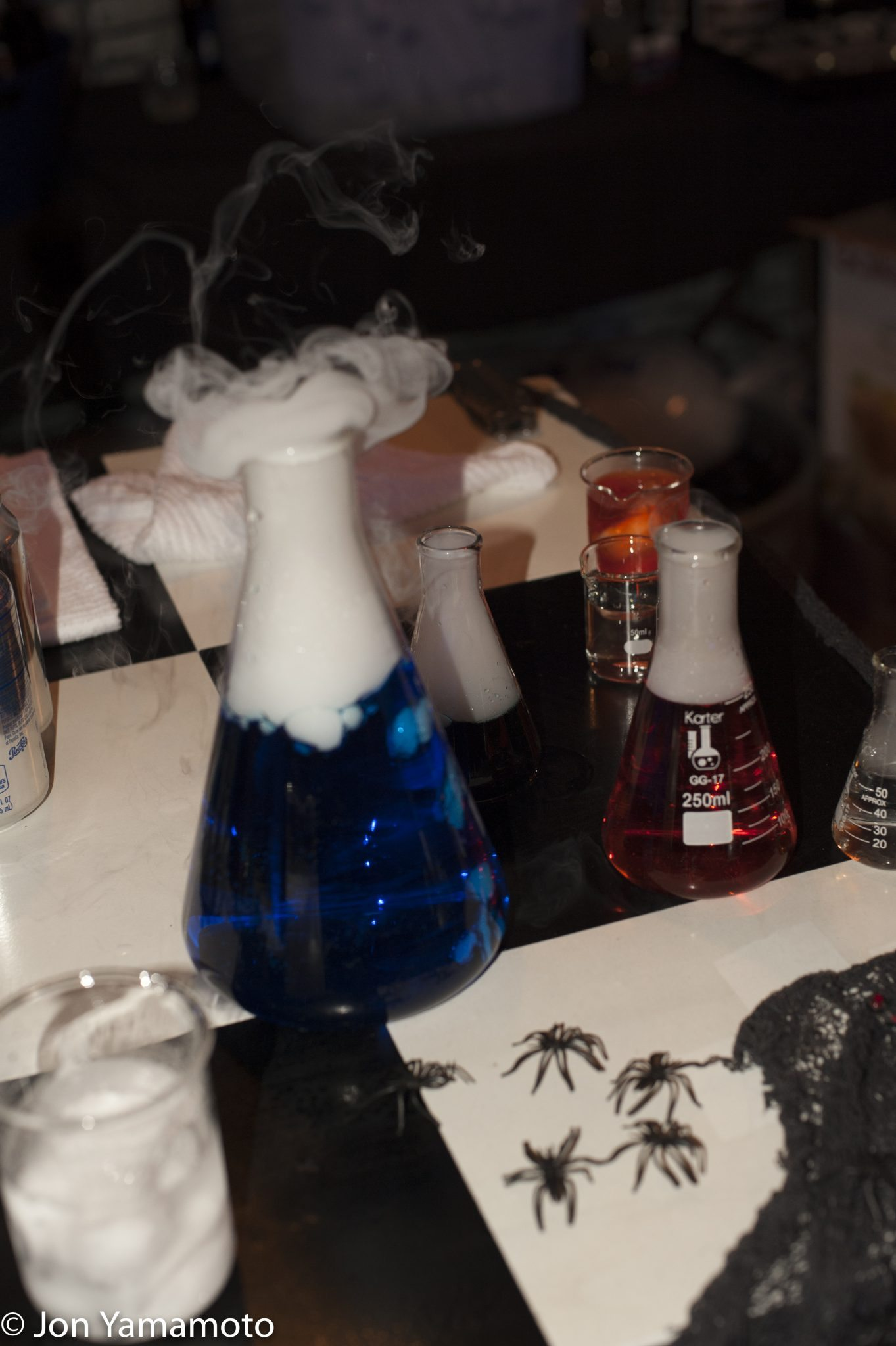 2016 Mystic Mansion Potions